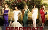 Desperate Housewives 絕望的主婦 #43