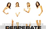 Desperate Housewives 絕望的主婦 #49