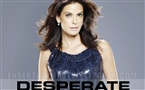 Desperate Housewives 絕望的主婦 #53