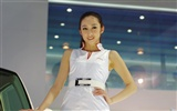 2010 Beijing Auto Show beauty (michael68 works) #12