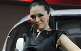 2010 Beijing International Auto Show (bemicoo works)