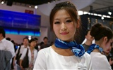 2010 Beijing International Auto Show (Sunshine Beach works)