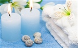 Features large SPA wallpaper (1)