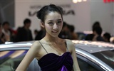 2010 Beijing International Auto Show beauty (1) (the wind chasing the clouds works) #21