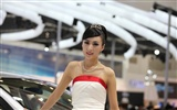 2010 Beijing International Auto Show beauty (1) (the wind chasing the clouds works) #27