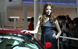 2010 Beijing International Auto Show beauty (1) (the wind chasing the clouds works) #28