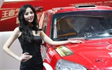 2010 Beijing International Auto Show beauty (1) (the wind chasing the clouds works) #32