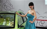 2010 Beijing International Auto Show beauty (1) (the wind chasing the clouds works) #34
