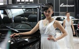 2010 Beijing International Auto Show beauty (1) (the wind chasing the clouds works) #35