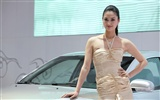 2010 Beijing International Auto Show beauty (1) (the wind chasing the clouds works) #36