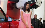 2010 Beijing Auto Show car models Collection (1) #6
