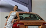 2010 Beijing Auto Show car models Collection (1) #9