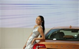 2010 Beijing Auto Show car models Collection (1) #10