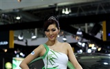 2010 Beijing Auto Show car models Collection (1) #20