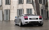 Enfriar coches Lamborghini Wallpaper (2) #8