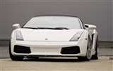 Enfriar coches Lamborghini Wallpaper (2) #9