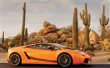 Enfriar coches Lamborghini Wallpaper (2) #10