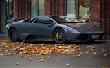 Enfriar coches Lamborghini Wallpaper (2) #13