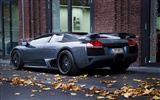 Enfriar coches Lamborghini Wallpaper (2) #14