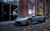 Enfriar coches Lamborghini Wallpaper (2) #19