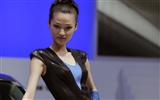 2010 Beijing Auto Show car models Collection (2) #2