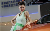 2010 Beijing Auto Show car models Collection (2) #3