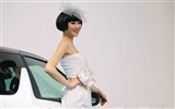 2010 Beijing Auto Show car models Collection (2) #8