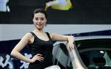 2010 Beijing Auto Show car models Collection (2) #10