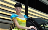 2010 Beijing Auto Show car models Collection (2) #13