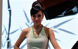 2010 Beijing Auto Show car models Collection (2) #14