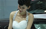 2010 Beijing Auto Show car models Collection (2) #19
