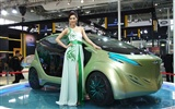 2010 Beijing Auto Show car models Collection (2) #20