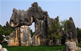 Stone Forest in Yunnan line (1) (Khitan wolf works)