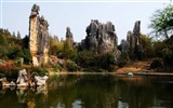 Stone Forest in Yunnan line (2) (Khitan wolf works)