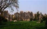 Stone Forest in Yunnan line (2) (Khitan wolf works) #20
