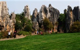 Stone Forest in Yunnan line (2) (Khitan wolf works) #21