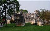 Stone Forest in Yunnan line (2) (Khitan wolf works) #25