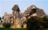 Stone Forest in Yunnan line (2) (Khitan wolf works) #26
