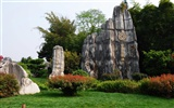 Stone Forest in Yunnan line (2) (Khitan wolf works) #29