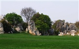 Stone Forest in Yunnan line (2) (Khitan wolf works) #34