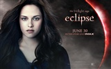 Saga Twilight: Eclipse HD tapetu (1) #18