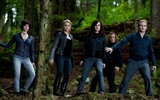 The Twilight Saga: Eclipse HD wallpaper (2) #2