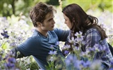 The Twilight Saga: Eclipse HD Wallpaper (2) #10