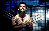 X-Men Origins: Wolverine 金剛狼
