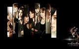 Girls Generation Wallpaper (4) #13