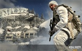 Call of Duty: Black Ops HD wallpaper #14