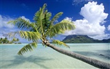 Beach Landschaft Wallpaper (7) #11
