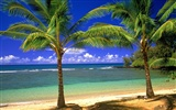 Beach Landschaft Wallpaper (7) #12