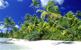 Beach Landschaft Wallpaper (7) #18