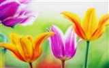 Widescreen wallpaper flowers close-up (14) #14